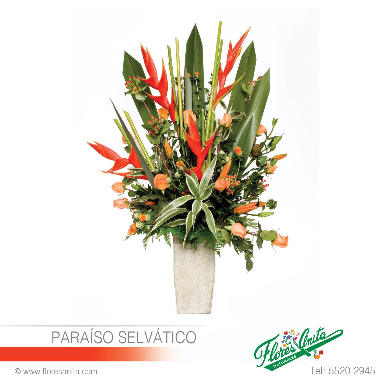 Paraíso Selvático Arreglo Floral Exóticos Florería