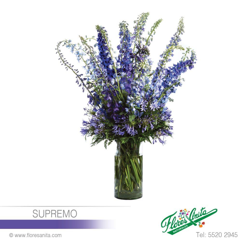 Supremo Arreglo Floral Exóticos Florería Flores Anita