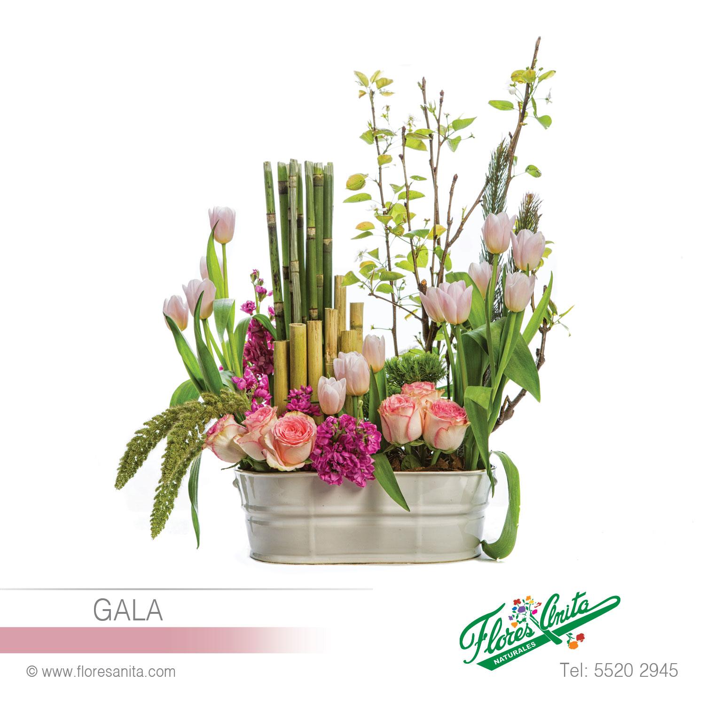 Gala Arreglo Floral Mixtos Florería Flores Anita Cdmx